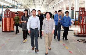 江苏省环保厅总工程师刘建琳来上上集团调研