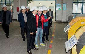 2015年11月22日,郎溪县党政代表团一行来上上电缆参观考察