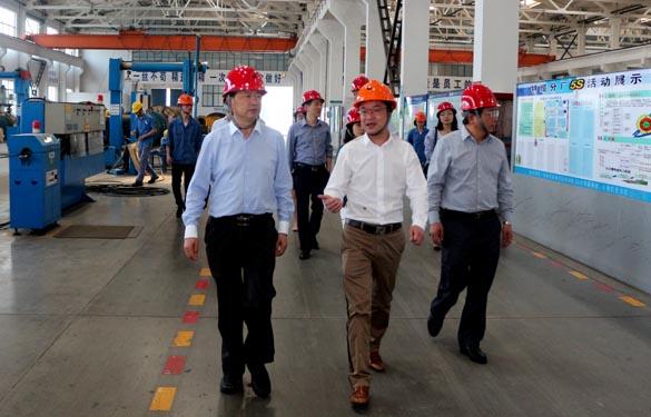2016年5月6日,江苏省法制办主任于爱荣在集团总经理丁志鸿陪同下参观生产现场