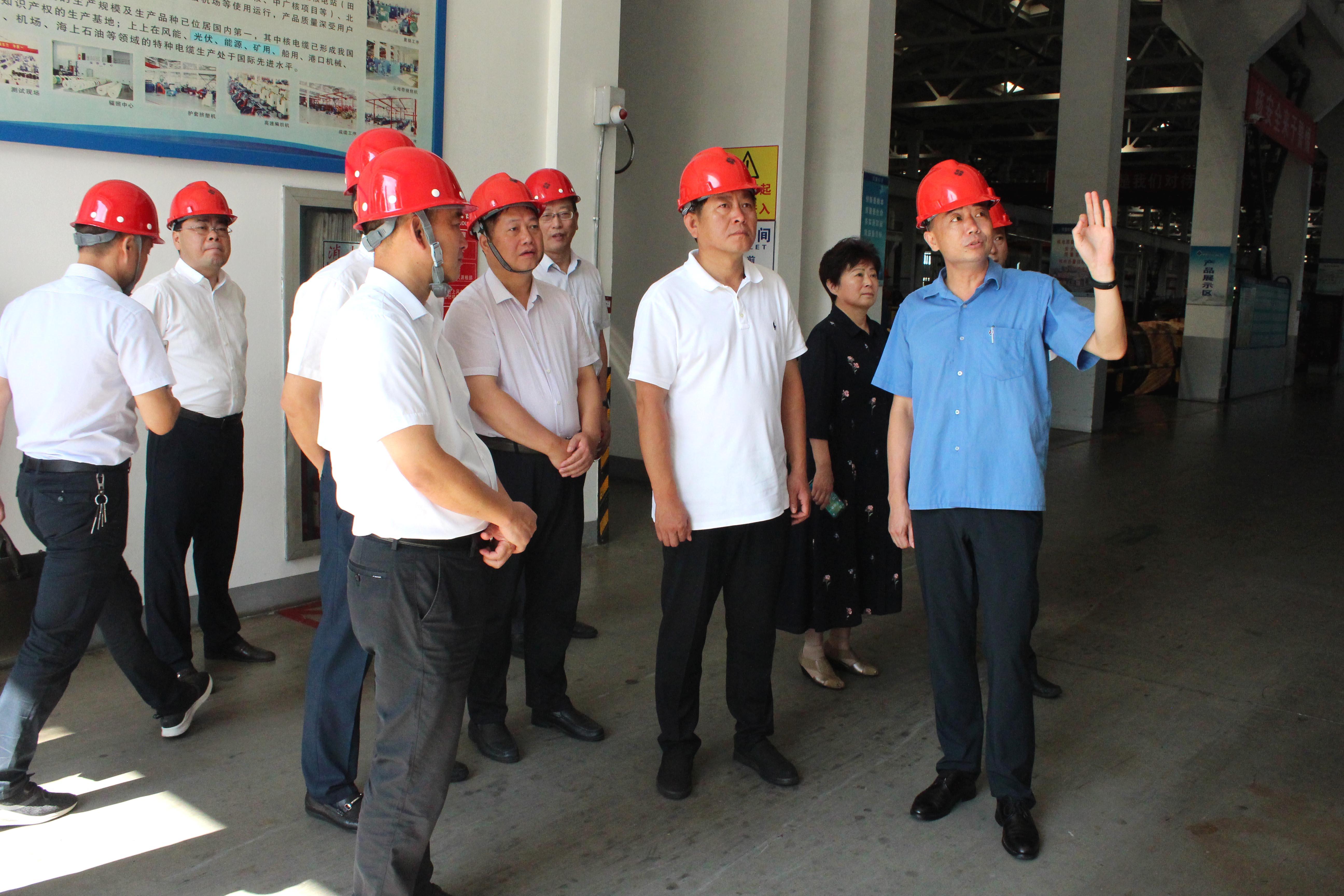 2019年8月3日,河南省信阳市考察组来上上参观考察