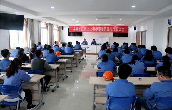 2016年4月20日,共青团江苏上上电缆集团第五次代表大会召开
