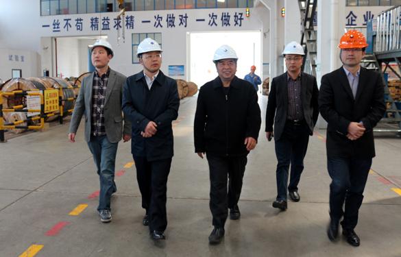 2015年3月26日,江苏省射阳县领导一行来上上电缆视察