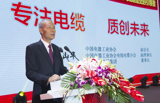 丁山华董事长在公司50周年庆典上的讲话