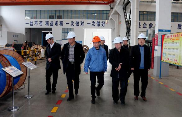 12月3日,丹江口市领导来上上电缆参观考察