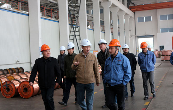12月11日,溧阳经信局领导一行调研上上电缆西厂区三期工程建设情况并参观超高压生产基地
