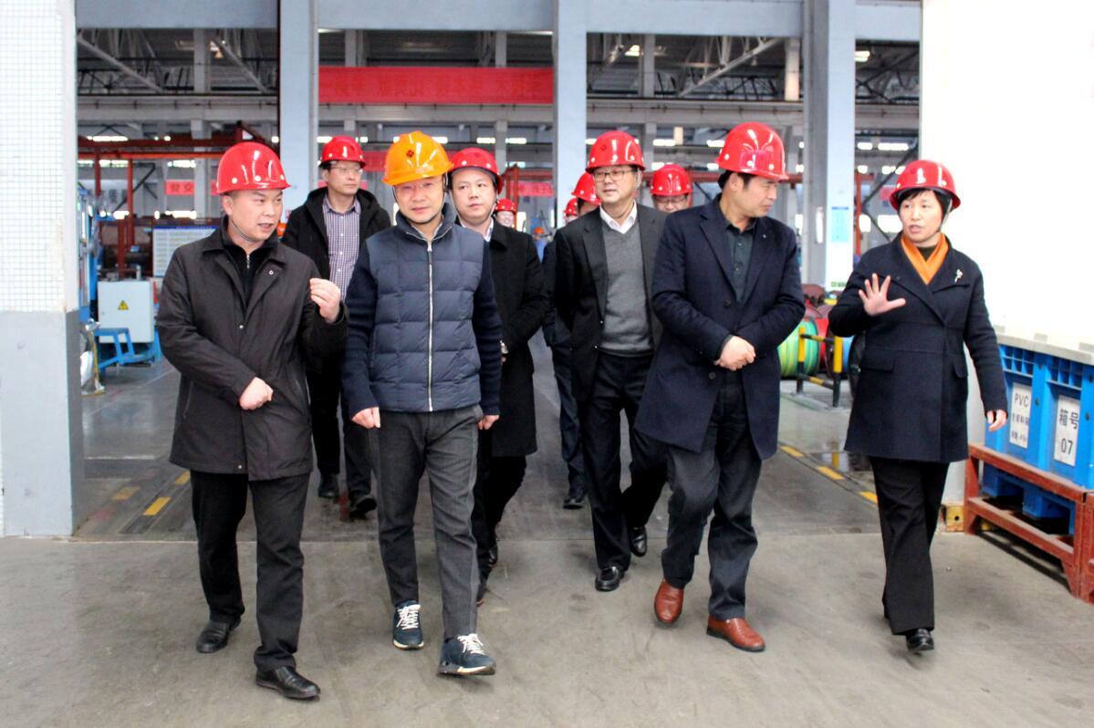 2019年3月7日,广安市岳池县考察团来上上亚博yabo210参观考察