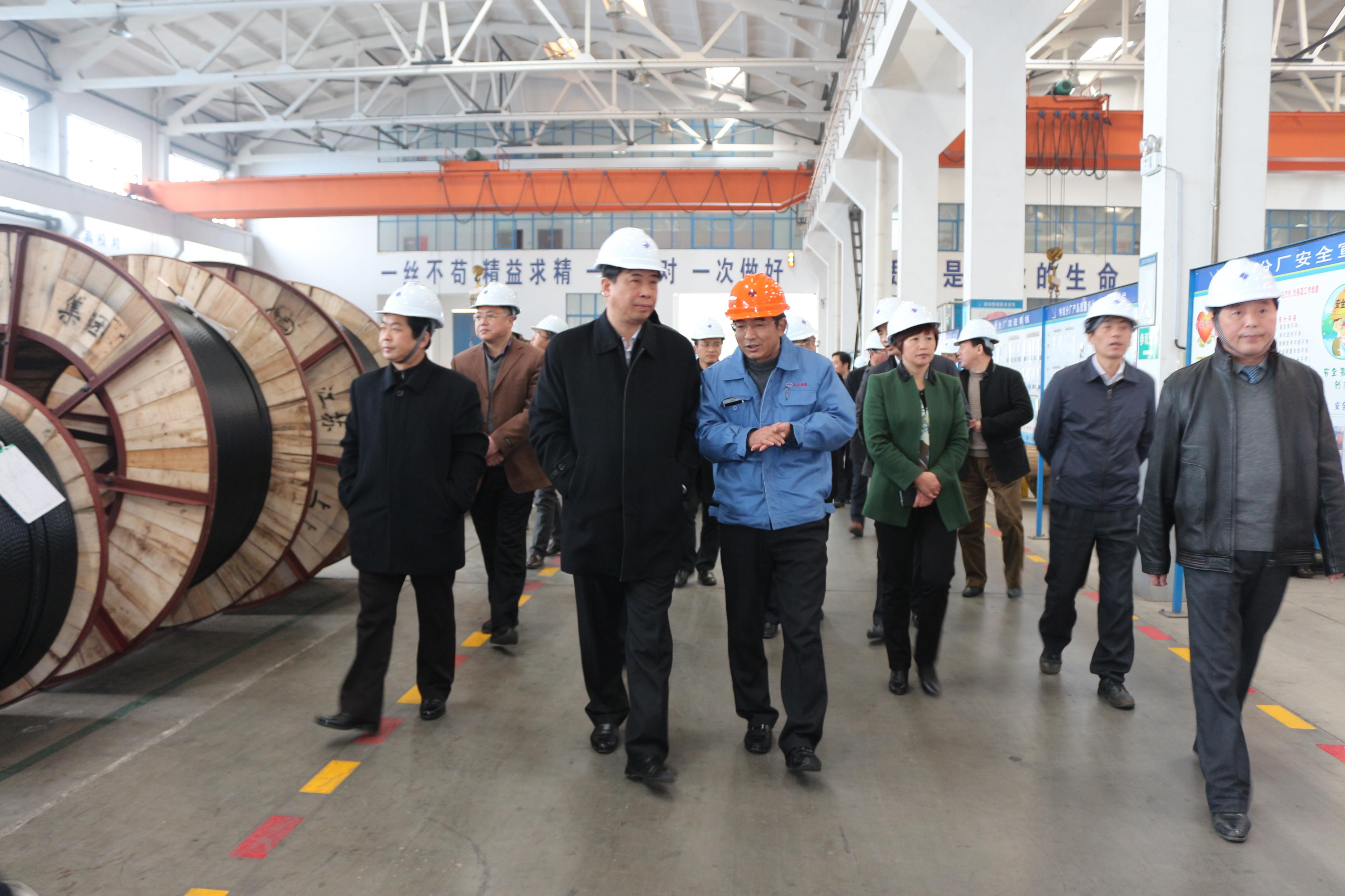 2015年3月11日,安徽省和县党政代表团一行来上上电缆考察
